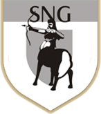 SNG SECURITIES AND PLACEMENT